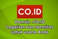 Jasa resgiter domain .co.id